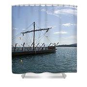 Replica Of Argo Shower Curtain