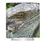 Reptilian Shower Curtain