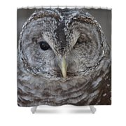 Rescue Owl Shower Curtain