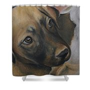 Rescue Pup Shower Curtain