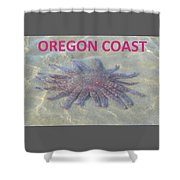 Rescued Sunflower Starfish Shower Curtain