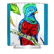 Resplendent Shower Curtain