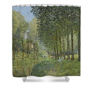 Rest Along The Stream - Edge Of The Wood Shower Curtain