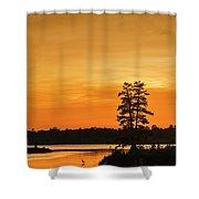 Restful Night Shower Curtain