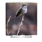 Restful Pose Shower Curtain