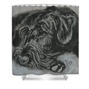 Restful Thoughts Shower Curtain