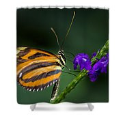 Resting Beauty Shower Curtain by Garvin Hunter