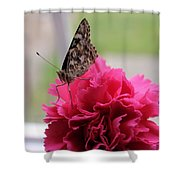 Resting Butterfly Shower Curtain by Myrna Migala