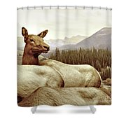 Resting Deer Shower Curtain