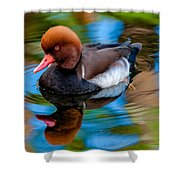 Resting In Pool Of Colors Shower Curtain