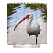 Resting On One Leg Shower Curtain