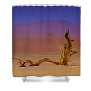 Resting Place Of A Dead Tree Shower Curtain