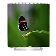 Resting Pose Shower Curtain