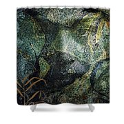 Resurgence # 2 Shower Curtain