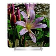 Resurrection Flower Shower Curtain