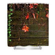 Retaining Wall In Autumn Shower Curtain