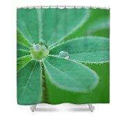 Retaining Water Shower Curtain