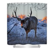 Retreat From The Sunrise Shower Curtain