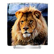 Return Of The King Shower Curtain