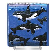 Return Of The Whale Shower Curtain