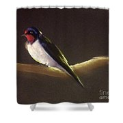 Returning Swallow Shower Curtain