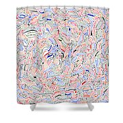Reunification Shower Curtain