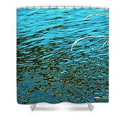 Reveal It Shower Curtain