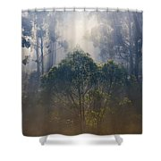 Revealed Shower Curtain
