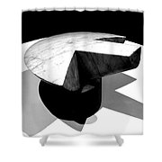 Revisiting Brancusi - Flying Turtle Shower Curtain