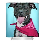 Rex 3 Shower Curtain