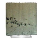 Rfb0215-2 Shower Curtain