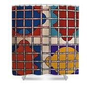Rfb0808 Shower Curtain