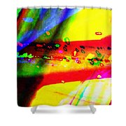 Rgb3a - York Shower Curtain