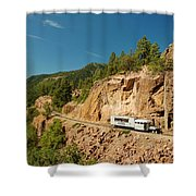 Rgs Goose On The Shelf Shower Curtain