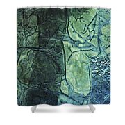 Rhapsody Of Colors 43 Shower Curtain