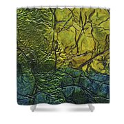 Rhapsody Of Colors 72 Shower Curtain