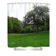 Rhineland-palatinate Summer Meadow Shower Curtain