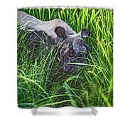 Rhino Charge Shower Curtain
