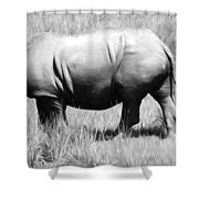 Rhino In The Grasses Shower Curtain