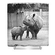 Rhino Mom And Baby Shower Curtain