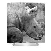 Rhino Profile Shower Curtain
