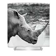 Rhino With Passengers Shower Curtain