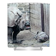 Rhinoceros And Baby Shower Curtain