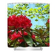Rhodies Art Prints Red Rhododendron Floral Garden Landscape Baslee Shower Curtain