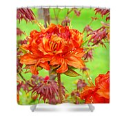 Rhododendron Flower Landscape Art Prints Floral Baslee Troutman Shower Curtain
