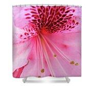 Rhododendron Flower Macro Pink Rhodies Baslee Troutman Shower Curtain