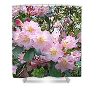 Rhododendron Flowers Garden Art Prints Floral Baslee Troutman Shower Curtain