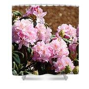 Rhododendron Garden Art Print Pink Rhodies Flowers Baslee Troutman Shower Curtain