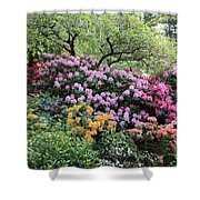 Rhododendron Hill Shower Curtain