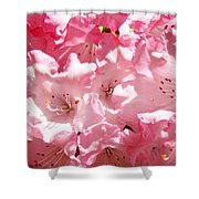Rhododendrons Flowers Art Print Pink Rhodies Baslee Troutman Shower Curtain
